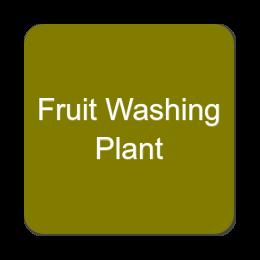 Fruit Washing Plant